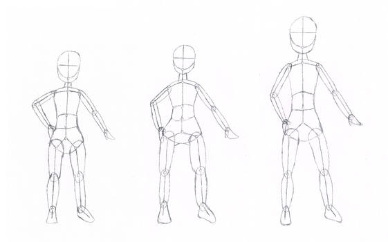 Anatomy Body Type Differences
