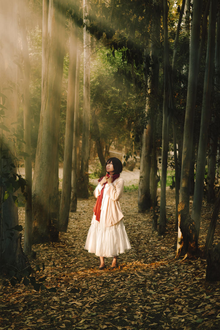 Mikasa by Mnguyen8097