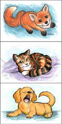 Widdle animals by chrispco
