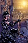 Arkham City Catwoman colors