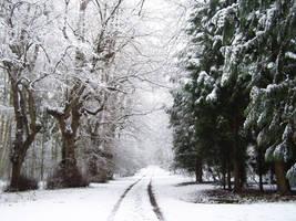 Snow Path 1