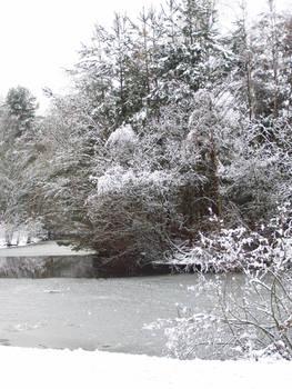 Frozen lake in snow