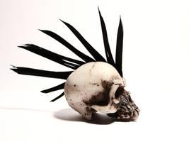 Bone head... by chop-stock