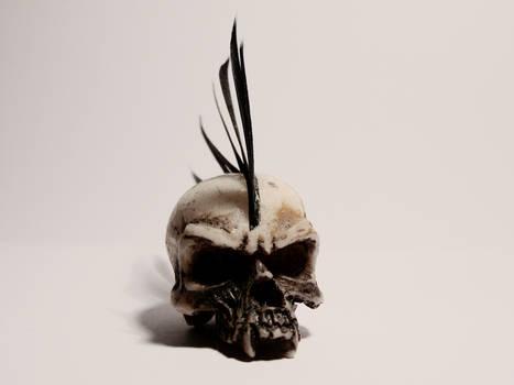 Bone head too...