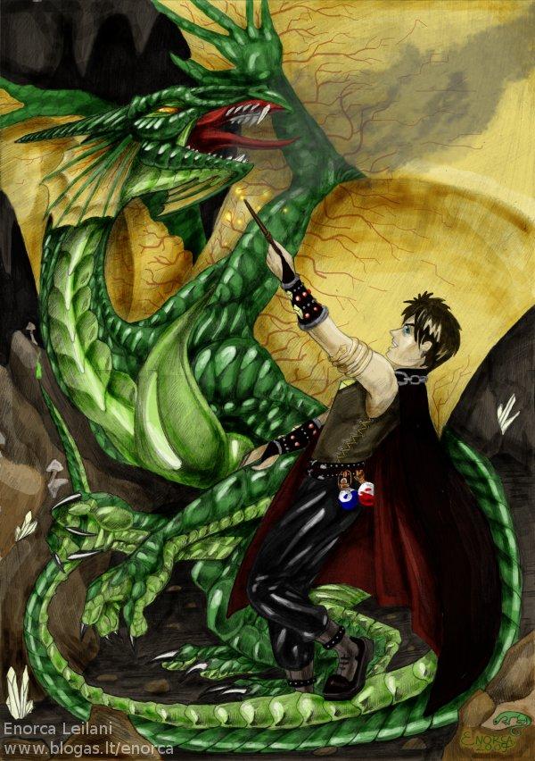 wizard vs dragon by zvynuota on deviantart