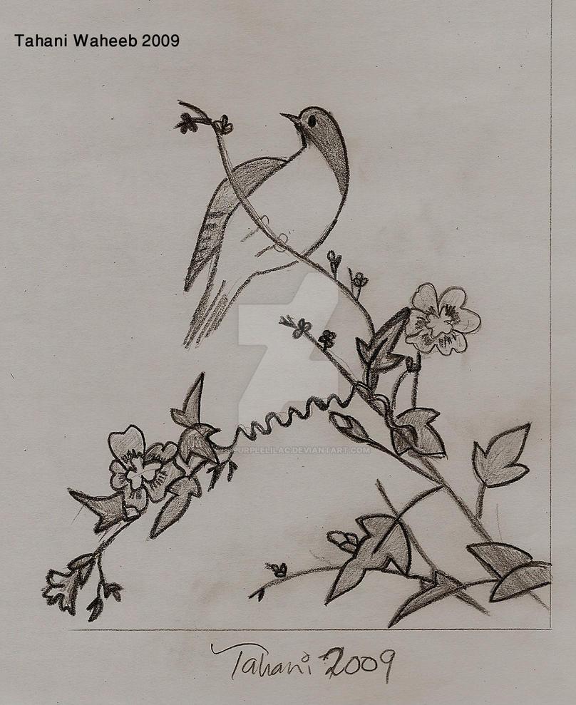 Bird 1 by ThePurpleLilac