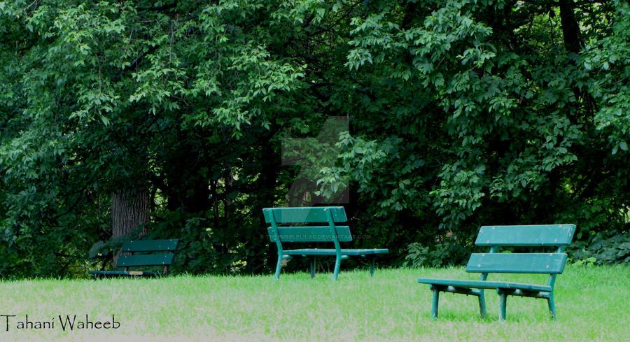 Landscape 3 by ThePurpleLilac