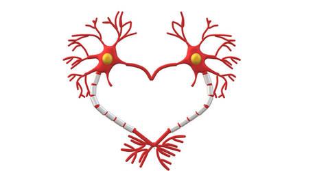 Neuronheartda by ThePurpleLilac