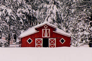 Lil Red Barn II