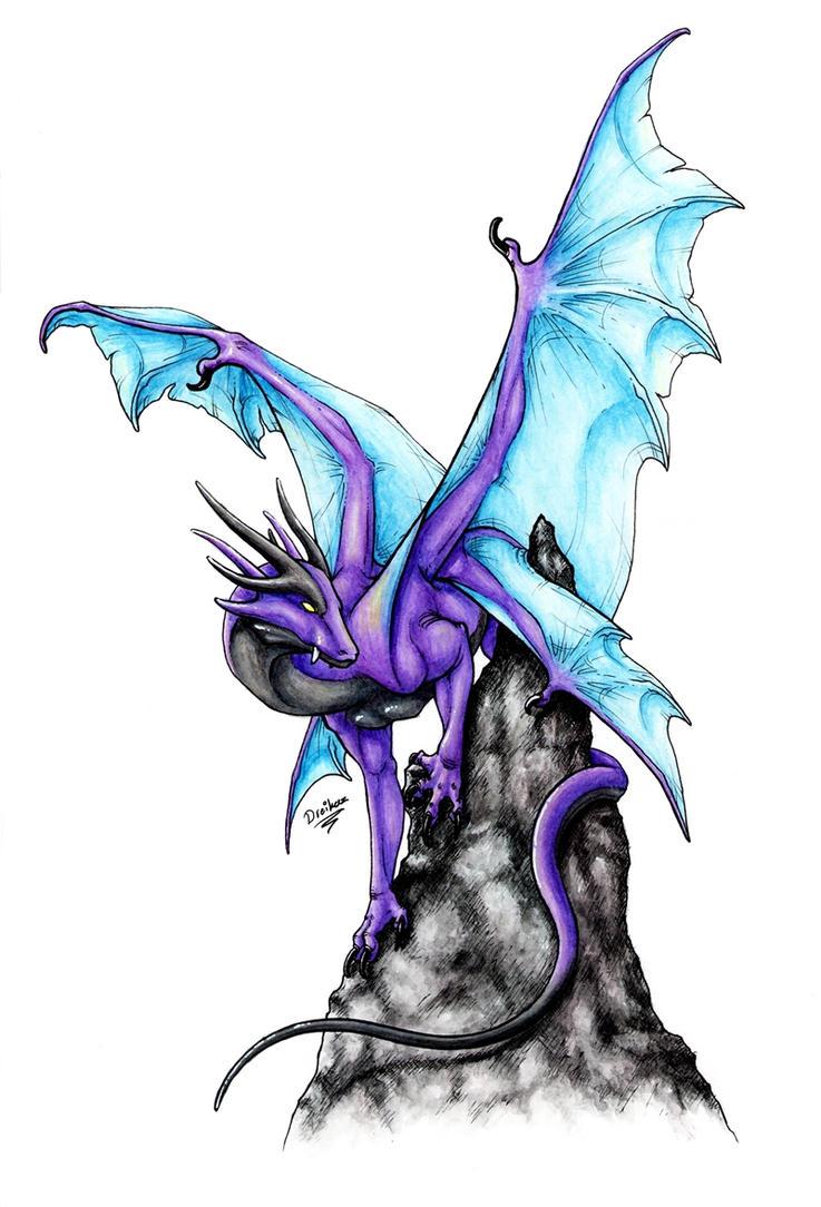 The Purple King by Dreikaz