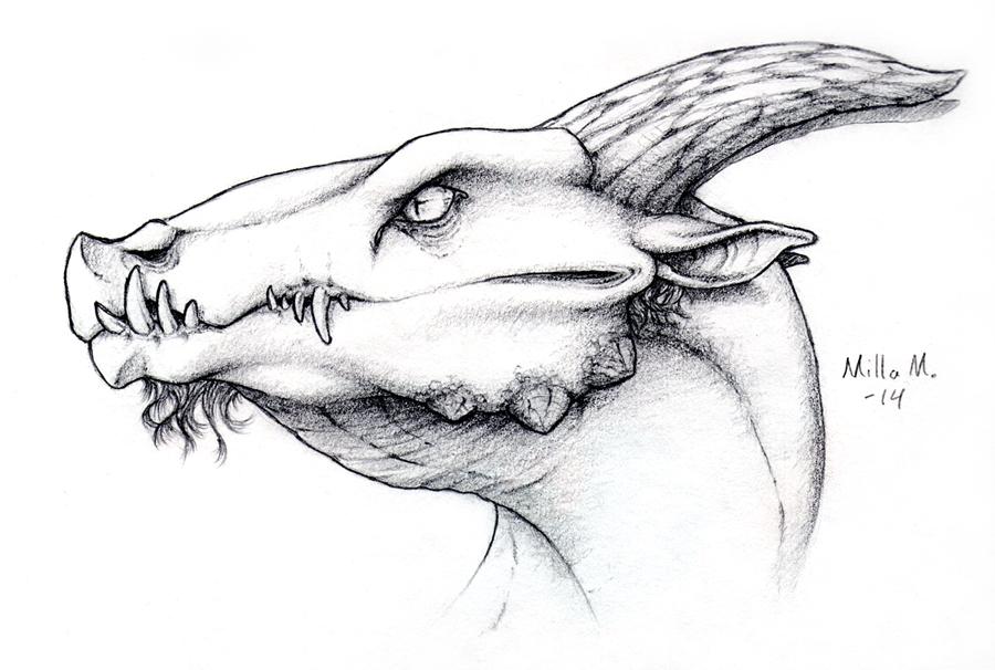 Dragon head experiment by Dreikaz