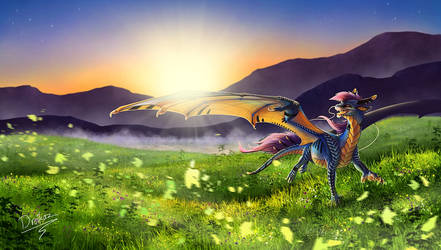 The light that starts a day by Dreikaz