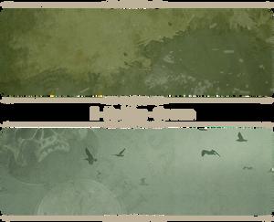 E-Kaliko-Green