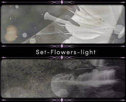 Set-Flowers-light