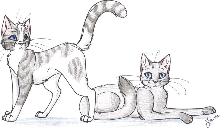 Warrior Cats Dovewing And Foxleap Ivypool and dovewing by cape-Ivypool And Foxleap
