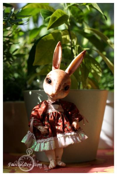 sunny bunneh by fairchildren