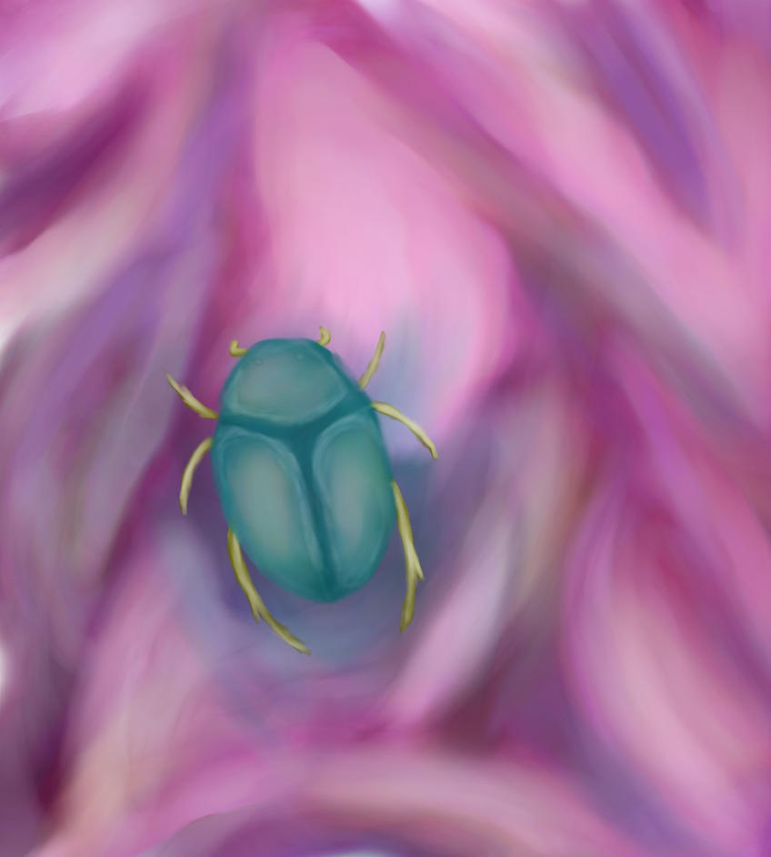 Scarab On Pink Satin by linceoscuro