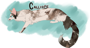 Calliope by viverrinae
