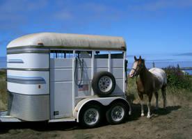 horse trailer by cyborgsuzystock