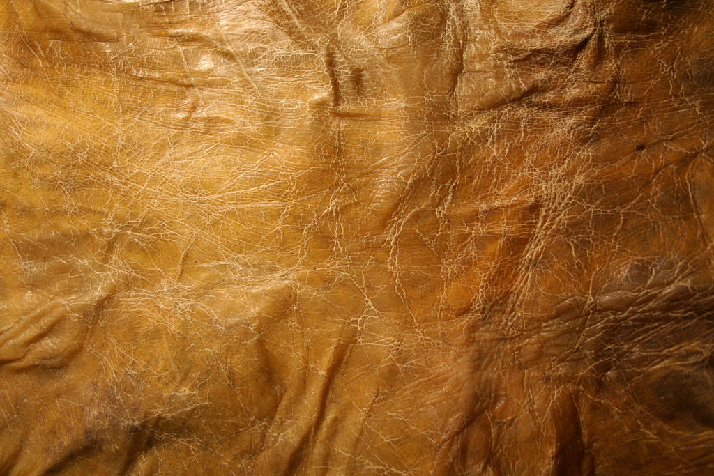 texture: leathery skin 1