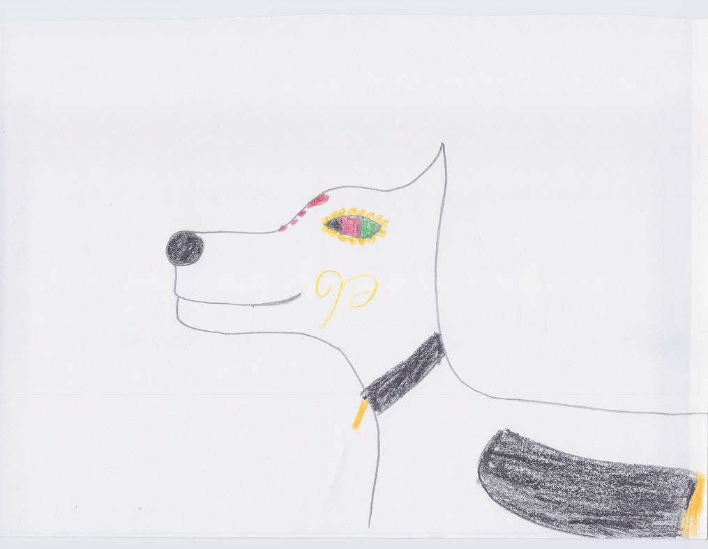 Wolf Marigold