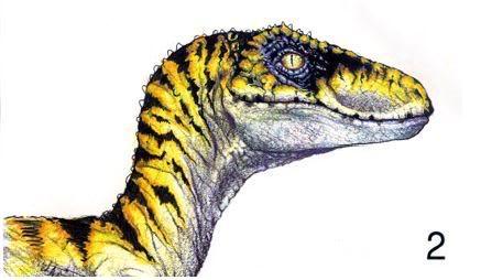 Untitled by MegaSpinosaur