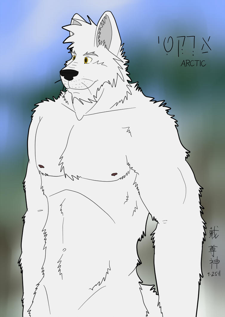 Anthro Arctic Wolf Arctic Wolf by timmylois2