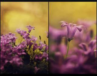 .: Bells II :. by Katosu