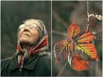 Autumn of life by Katosu