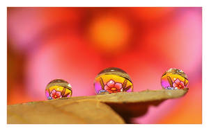.:Fabolous droplets:.  III by Katosu
