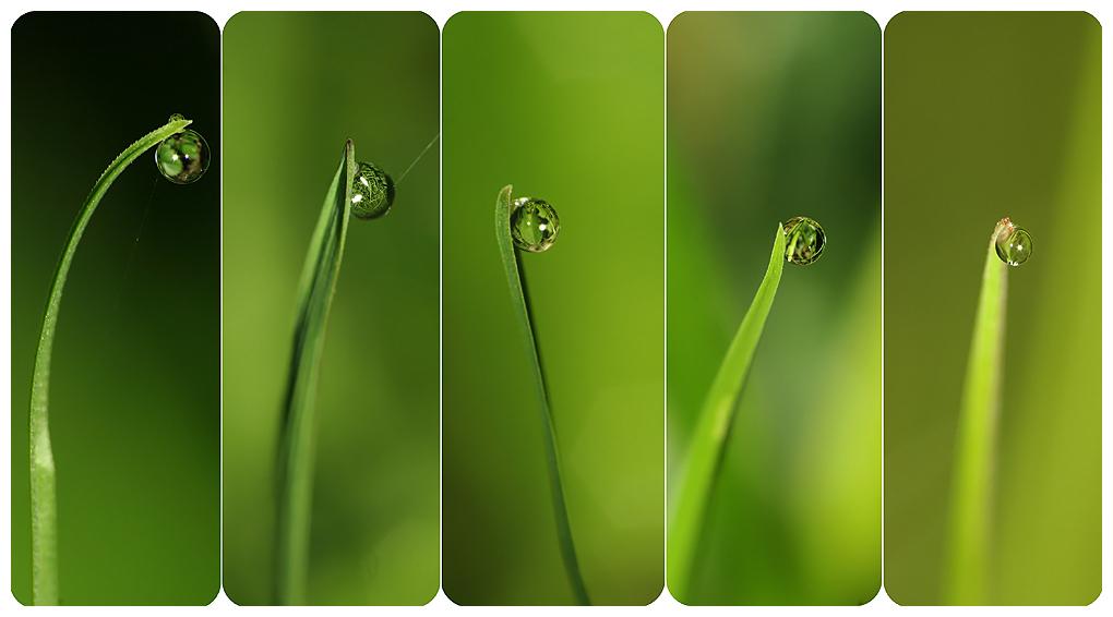 .: Single bubble :. by Katosu