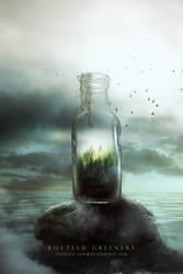 Bottled Greenery