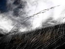 nothern wind by SLavaShi