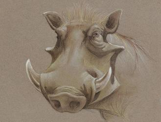 Warthog by sinccolor