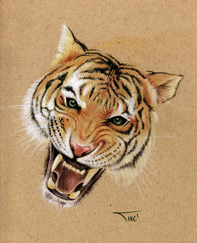 It is an image of Légend Roaring Tiger Drawing