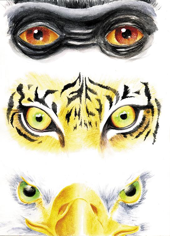 Eye Demo X3 by sinccolor