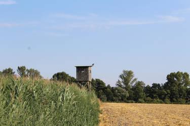 Austria Landscape 1 by Dreikun