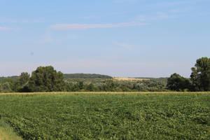 Austria Landscape 2