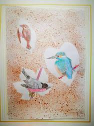 Sparrow, Kingfisher, Bullfinch
