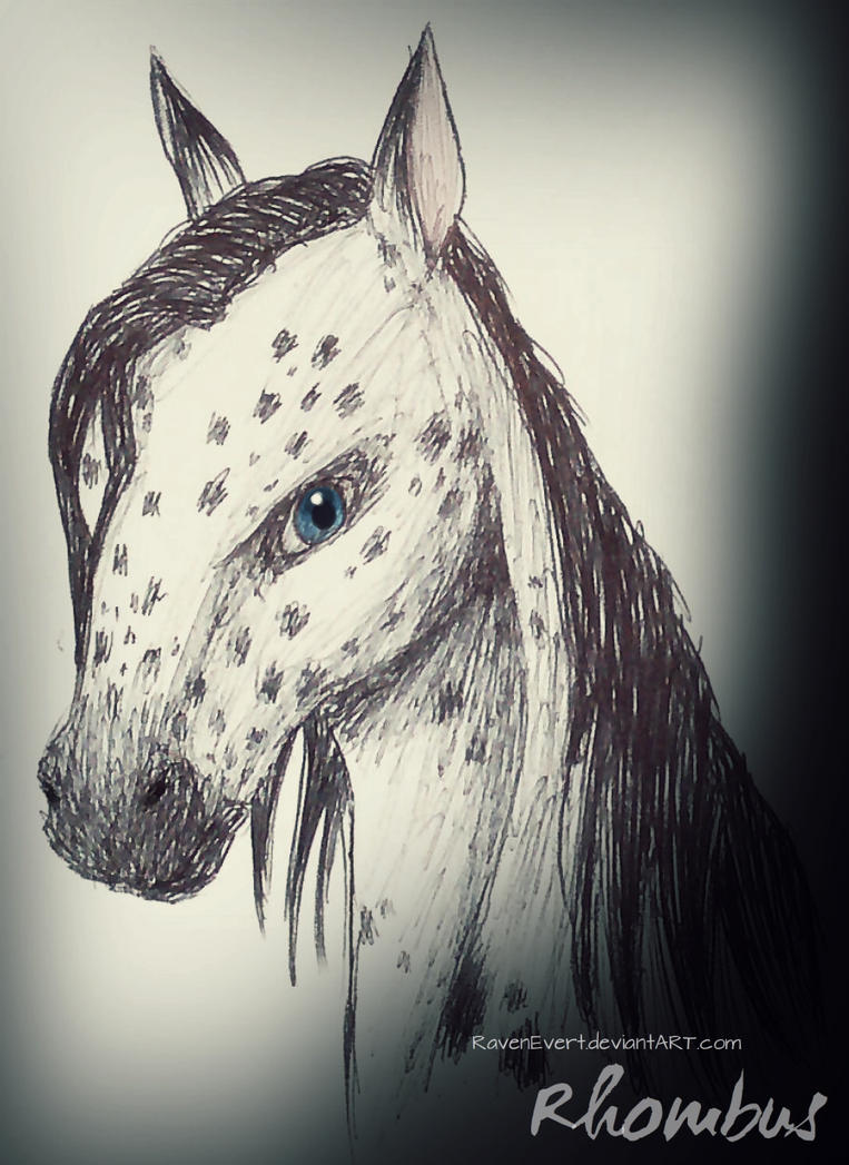 Rhombus OC - Horse by RavenEvert