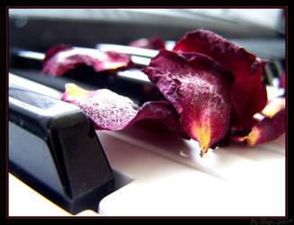 Petals On Piano by yhdenenkelinunelma