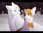 StarClan's Light