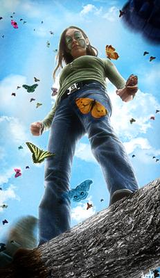 Butterflies Lover