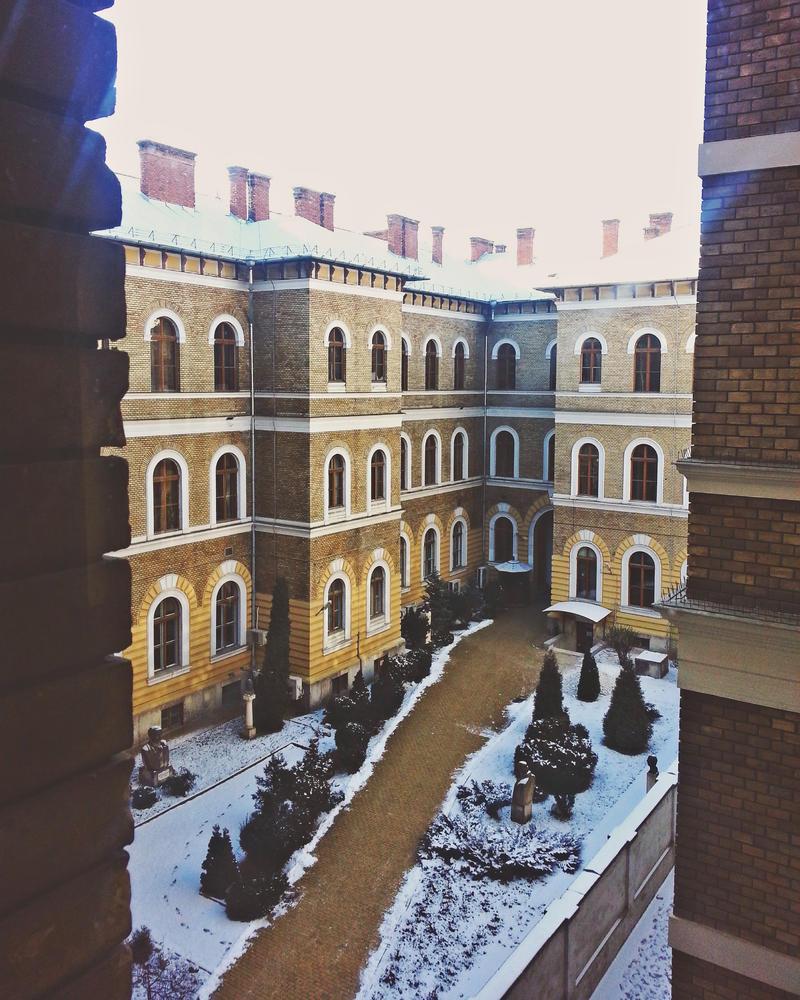 Babes-Bolyai University by crisxxprogram