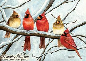 Winter Cardinals - 2015 Holiday Card by Kamakru