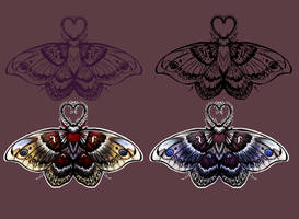columbia silkworm moth