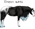 Petique Pony Import #006