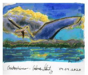 PALEOART   Ornithocheirus Colour Study
