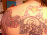 harley davidson eagle tattoo 3