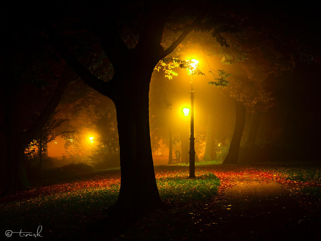 Autumn Dream by tvurk